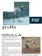 cartilla grulla 2014