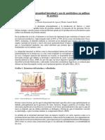 Articulo Integridad Intestinal 2071d612b