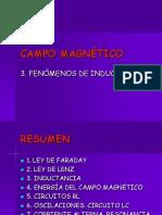 Campo Magnetico3