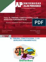 Plantilla Uap 2019-1b - Sesion 4. El Tribunal Constitucional y Los Dd Ff