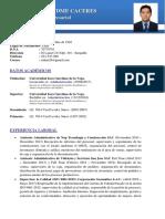 Curriculum Vitae Ricardo