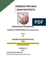Proyeccion Social - Caratula y Esquema-1