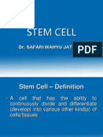 97019_STEM CELL.pptx