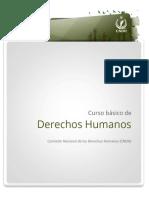 Curso Básico Derechos Humanos