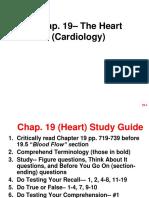 Ch19 Heart