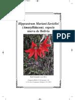 Hippeastrum Mariani-Savielloi (Amaryllidaceæ), especie nueva, de Bolivia