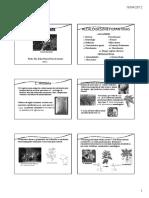 3 aula - Alcaloides_Profª Edna Maura (1).pdf