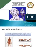 Biomecánica (Posiciones, Planos, Ejes, Movimientos y Articulaciones)