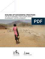 scaling-up_successful_practices_(full).pdf