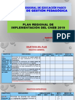 Plan Regional Implementación Cneb 2019_1