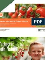 4 Mip - Tomate Koppert.pptx