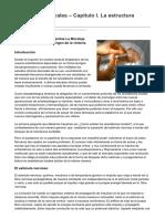 anestesiar.org-Anesteìsicos Locales  Capiìtulo I La estructura nerviosa.pdf
