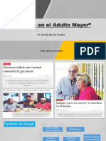 Seminario - Suicidio en El Adulto Mayor