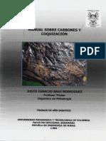 Manual Sobre Carbones Y Coquización.pdf