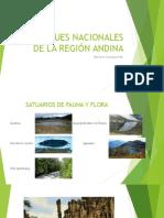 Parques Región Andina.pptx