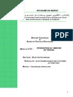 M31 integration au marche de travail.PDF
