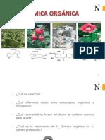 Introducción a la Química Orgánica.pdf