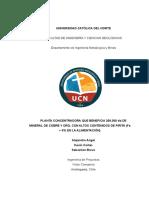 Informe Final - Proyecto Branro v3 (1)