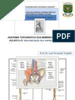 AULA REVISÃO  VASCULARIZAÇÃO E INERVAÇÃO DOS MEMBROS INFERIORES.pptx