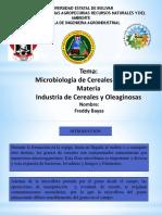 Microbiologia de Cereales y Harinas