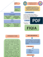 Folleto Anemia Nutricion PDF