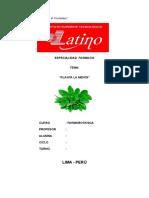 Monografia Planta La Menta