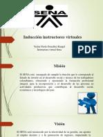 Inducción instructores virtuales