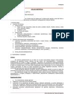 Colico nefritico-teor.pdf