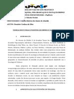 Paper das Teorias a seres utilizadas.doc