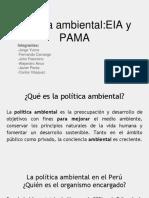 Política Ambiental_EIA y PAMA