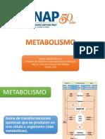 metabolismo1.pdf