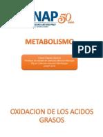 Metabolism o 2