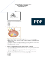 Instrumen Evaluasi (Soal Hots) Kd 3.8- Sistem Respirasi-klp 3 Haf