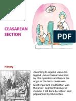 Cesearean Section Final PPT.ppt