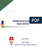 Espumantes en Flotación Roles y Efectos