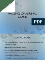 Imaging of Adrenals
