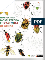 Cahier Insecte