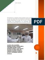 Informe de Laboratorio de Quimica General II