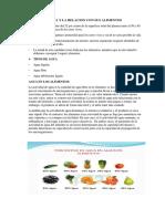 El Agua y La Relacion Con Sus Alimentos