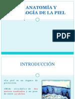 expodepielcirugiaplastica121203192035phpapp01_1