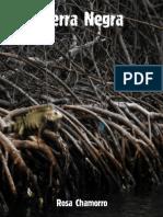 Fichas Libros. Sierra  Negra.pdf