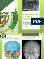 1. Anatomia Ocular