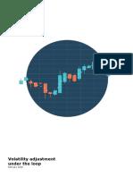 Ch Fs Volatility Adjustment Under the Loop Final