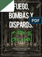 Fuego-Bombas-y-Disparos.pdf