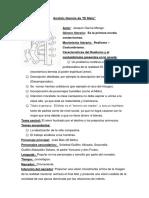 El Moto Análisis y Cuestionario (Autoguardado) (2)