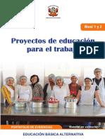 proyectos-educacion-para-trabajo-nivel-1-2-portafolio (1)