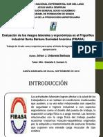 Presentacion Anteproyecto Riesgos Labores