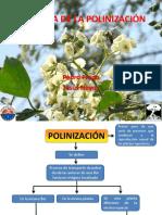 Ecologia_de_la_polinizacion.pdf