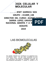 Las Biomoleculas Trabajo Final