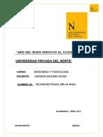 AVANCE-T1-ESTADISTICA-GENERAL.docx